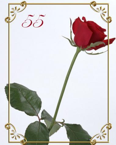 открытки 55 лет: