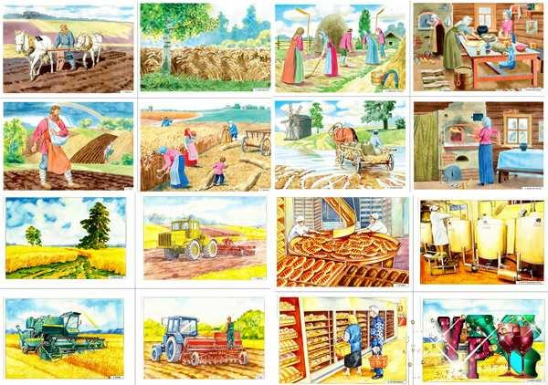Картинки для детского сада сбор урожая