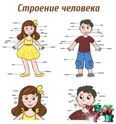 ������� ��� �������� ���� - �������� ��������