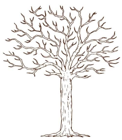 Шаблоны для дерева пожеланий на день рождения 4