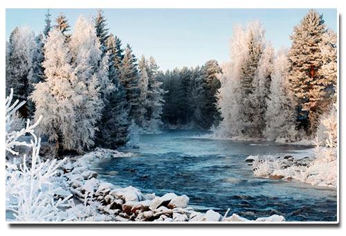 Новый год в Карелии 2019. Отдых зимой, ранее бронирование