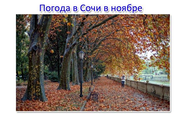 Погода в Сочи в ноябре 2017 температура воды и воздуха. Самый точный прогноз погоды
