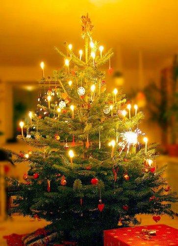 Сценарий новогоднего праздника - Царица Ночь