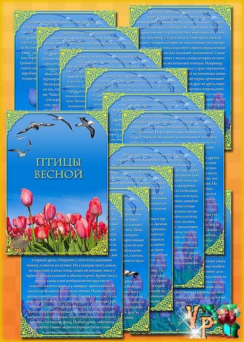 Папка передвижка для детского сада  - Птицы весной