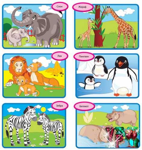 Картотека занятий - Кто живет в зоопарке