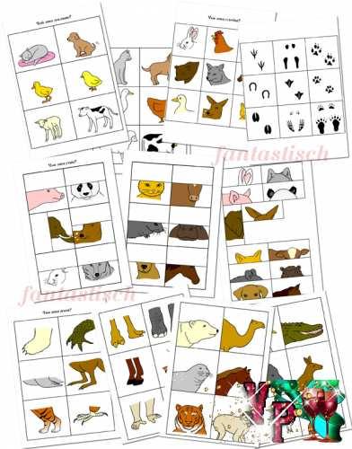 Дидактические занятия с детьми - Животные и птицы
