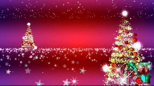 Футажи новогодние две елки для видео заставки