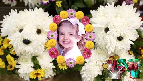 Рамка для фотошоп - Милые собачки из хризантем