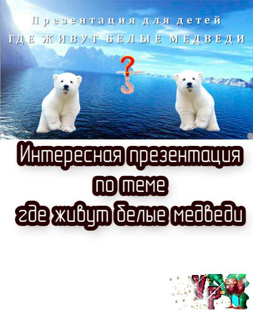 Презентация для детей - Где живут белые медведи