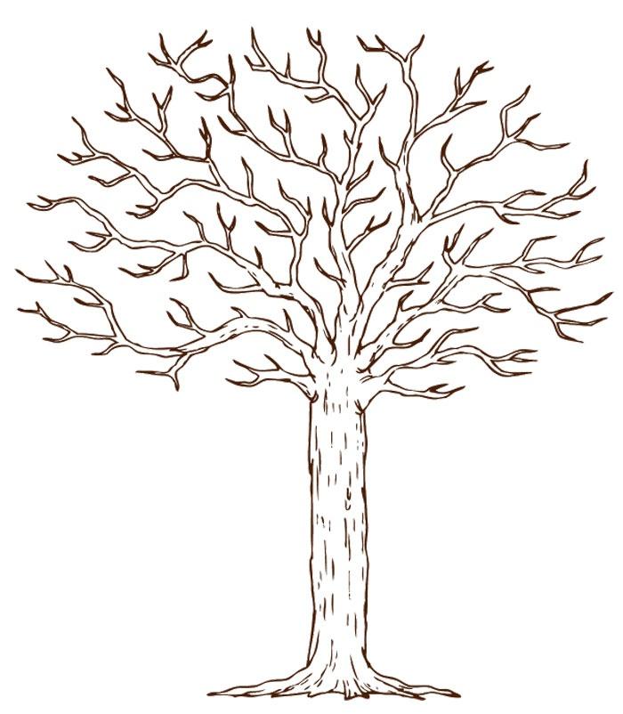 инкриминируется шаблон дерева пожеланий своими руками стремительно набирает популярность