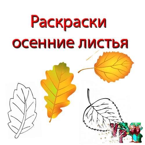 Раскраски для детей осенние листья. Листья деревьев