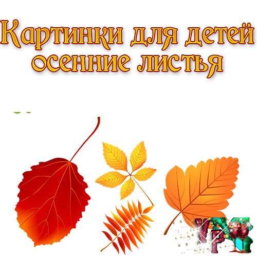 Картинки для детей осенние листья