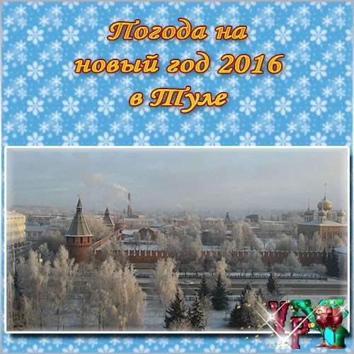 Погода на новый год 2016 в Туле. Какая будет погода