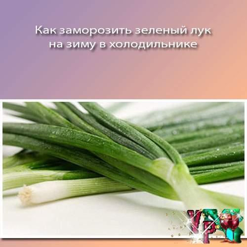Как заморозить зеленый лук на зиму в холодильнике? Новый способ