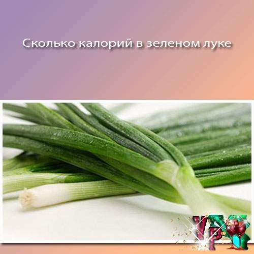 Сколько калорий в зеленом луке? Считаем калории