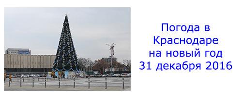 Погода в Краснодаре на новый год 31 декабря 2016. Будет ли снег