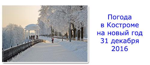 Погода в Костроме на новый год 31 декабря 2016: снег, холод
