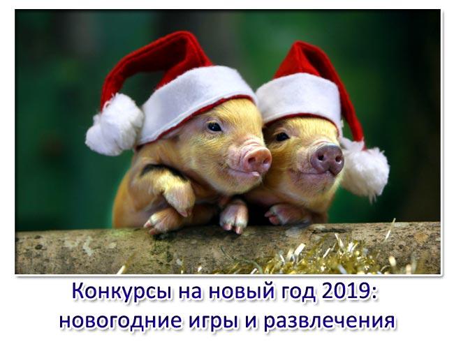 Конкурсы на новый год 2019 новогодние игры и развлечения. 2019 год свиньи
