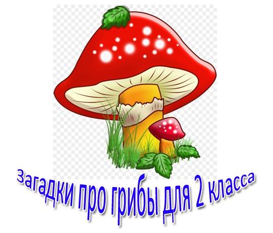 Загадки про грибы для 2 класса: с ответами, короткие. Новые загадки