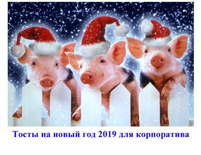 Тосты на новый год 2019 для корпоратива прикольные в год свиньи. Новые тосты