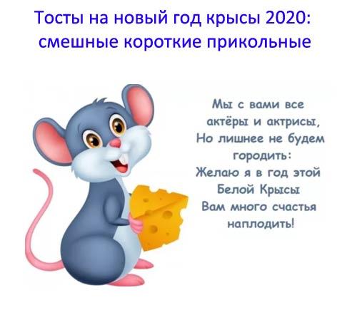 Тосты на новый год крысы 2020: смешные короткие прикольные. Тосты для компании